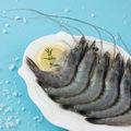 【进口】海鲜大礼包